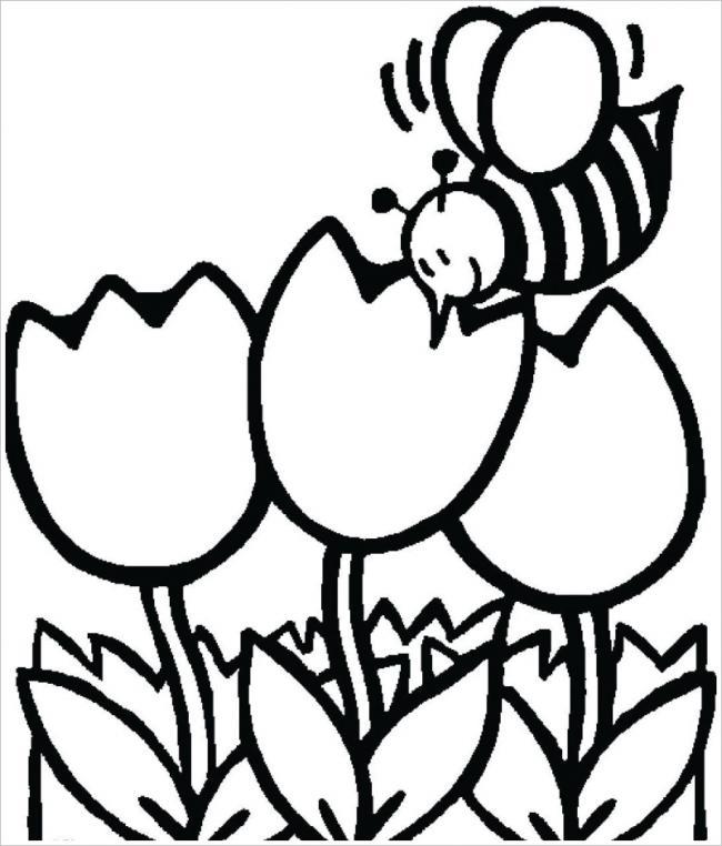 Chú ong nhỏ bên khóm hoa