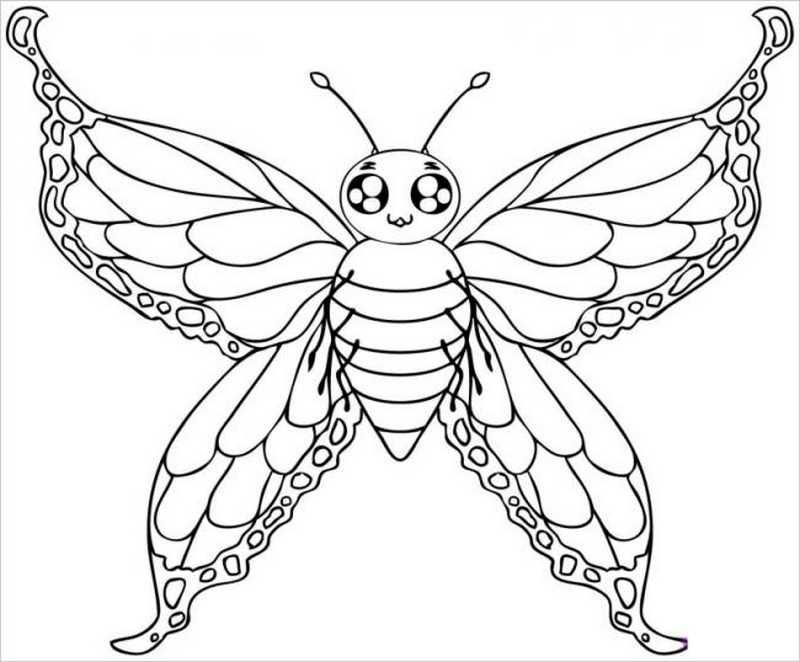 hình con bướm đẹp