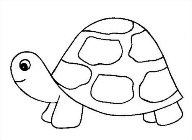 Hình tô màu con rùa đơn giản