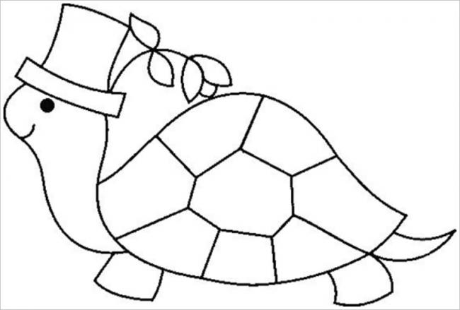 hình ảnh rùa đội mũ