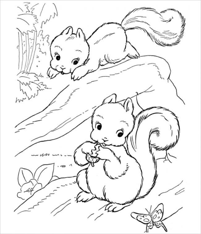 hình ảnh hai chú sóc tinh nghịch nhảy nhót