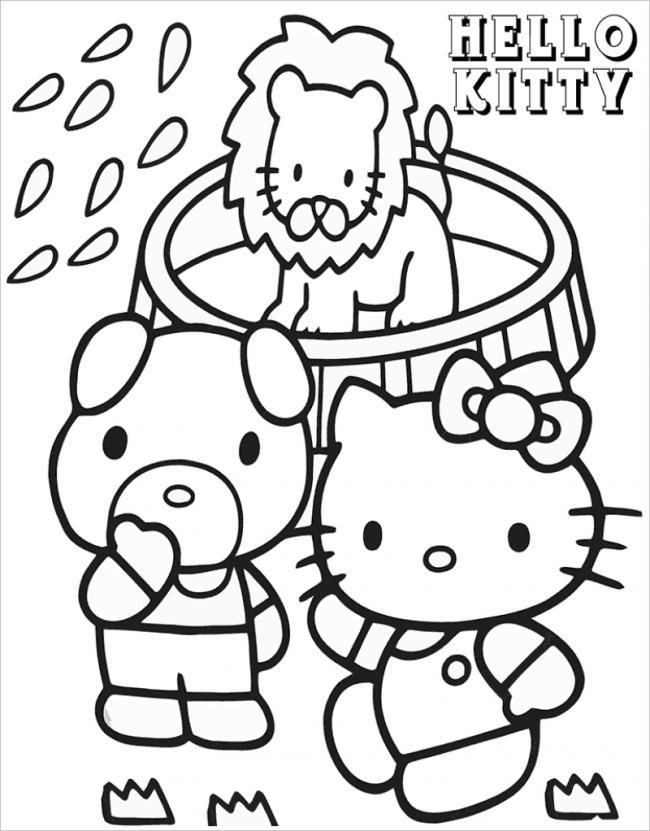 hình ảnh mèo Kitty