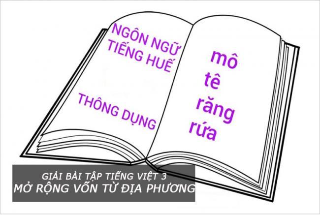Giải bài tập Tiếng Việt 3 Mở rộng vốn từ Địa phương