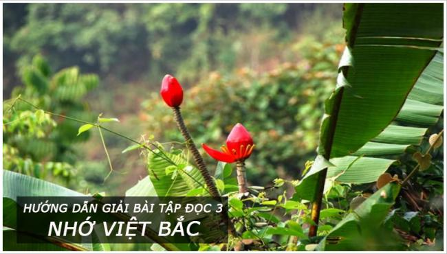 Hướng dẫn giải bài tập đọc Nhớ Việt bắc trang 116 Tiếng Việt 3