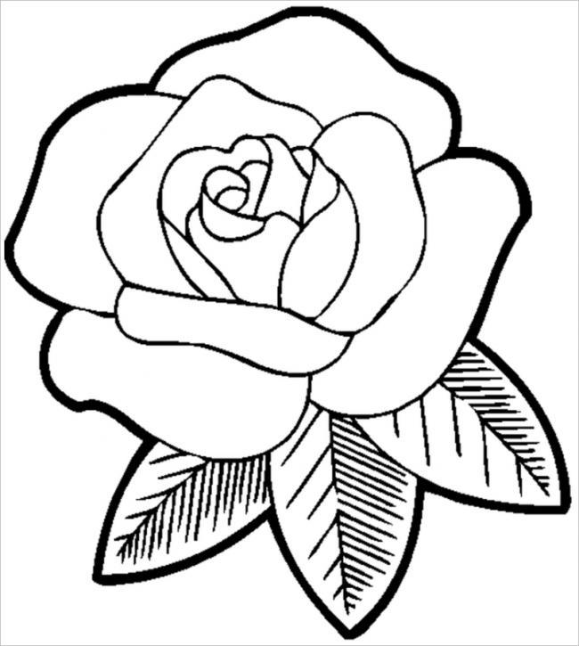 Bông hồng đỏ tươi thắm