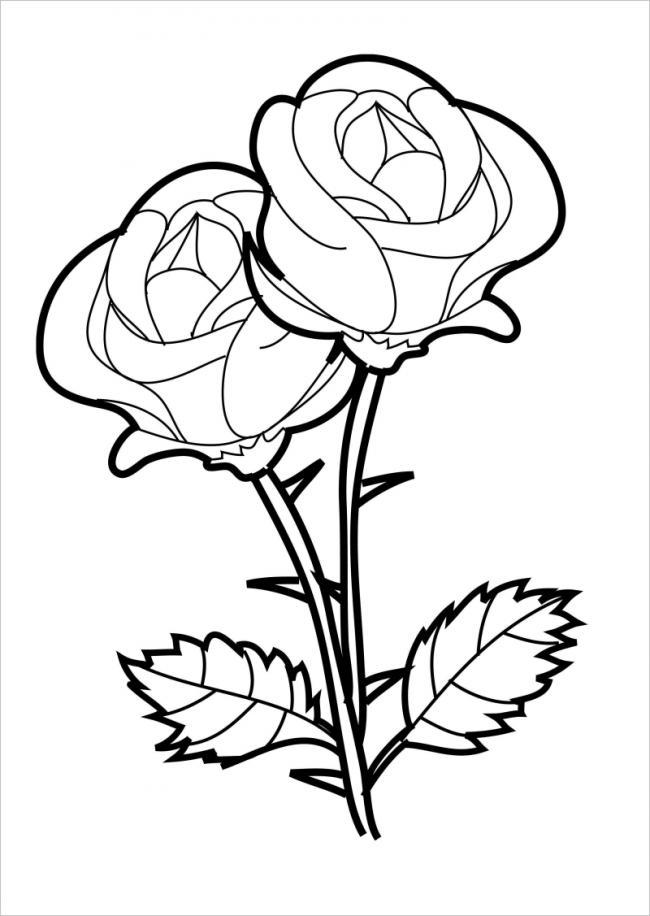 hình ảnh hai bông hồng