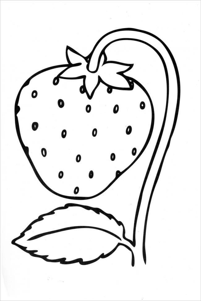 cành dâu tây