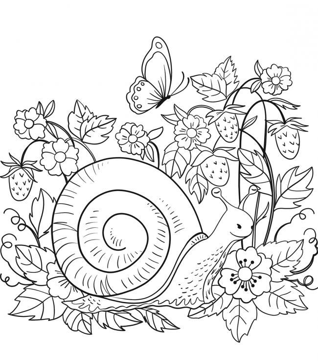 hình ảnh ôc bên khóm hoa