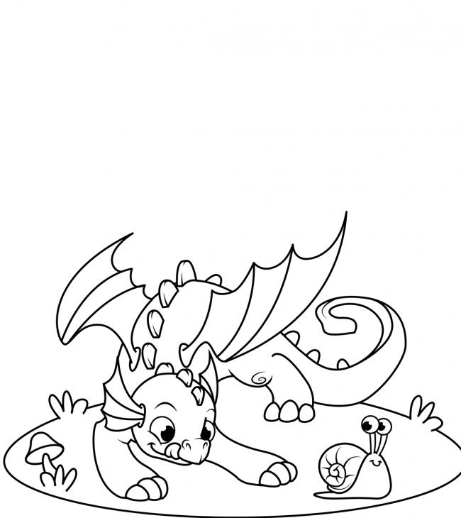 Ốc sên đang vui đùa cùng bạn rồng nhỏ