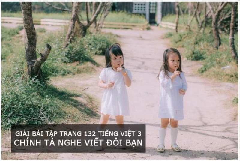 Giải bài tập trang 132 Tiếng Việt 3 Chính tả nghe viết Đôi bạn