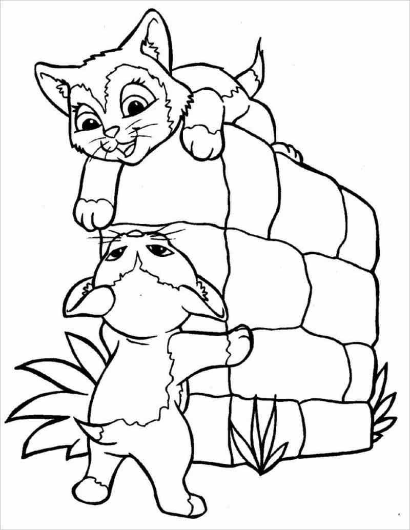 hình tô màu hai chú mèo