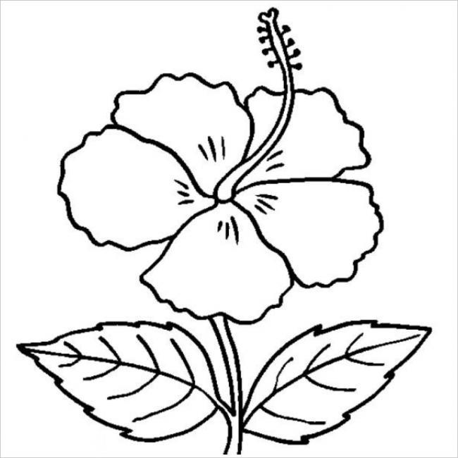 hình tô màu bông hoa