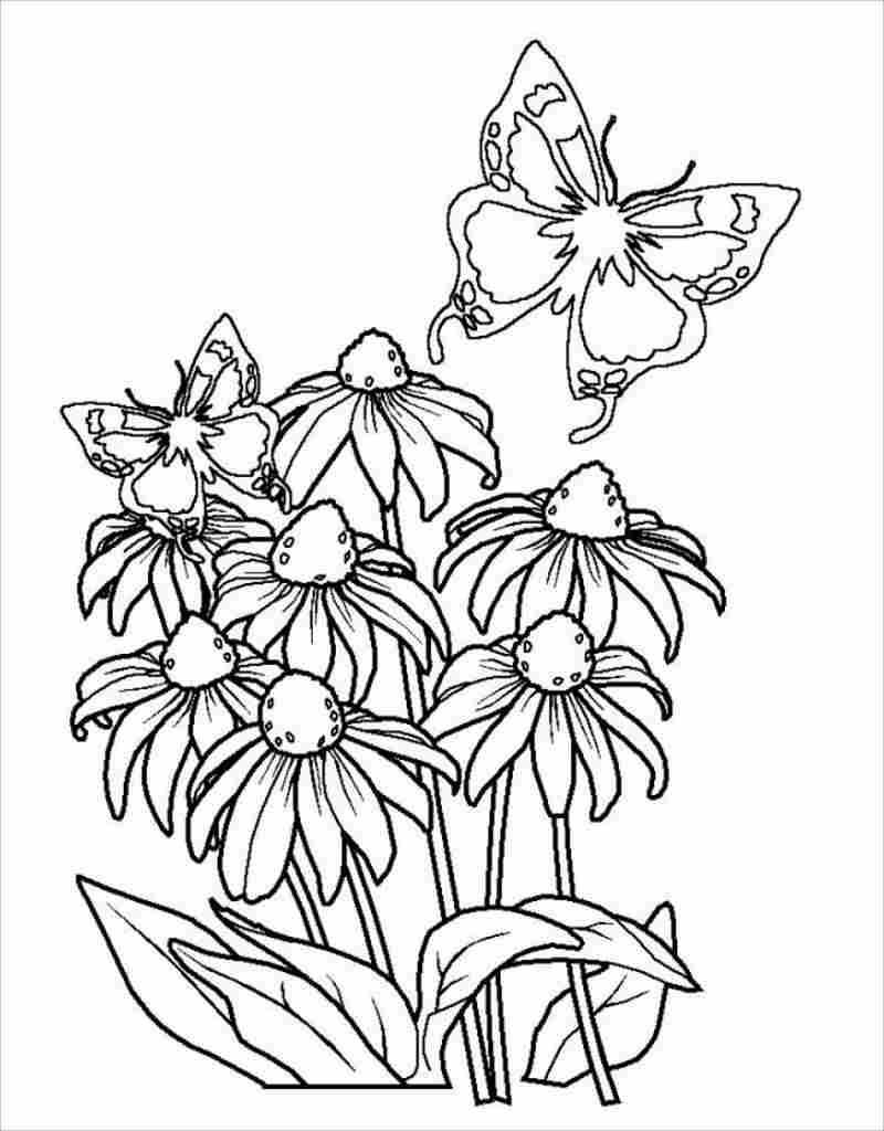 khóm hoa và bướm vàng