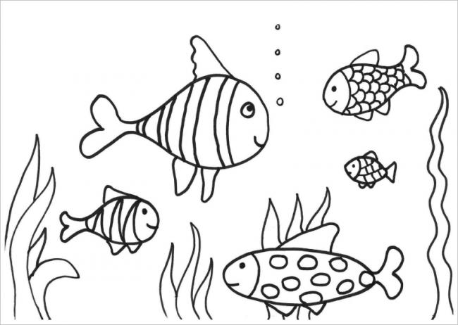 hình ảnh đàn cá