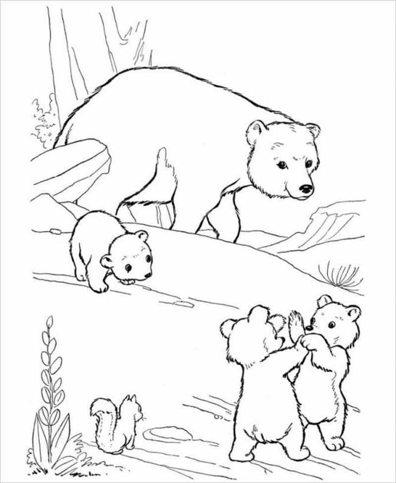 hình tô màu gấu mẹ và đàn con