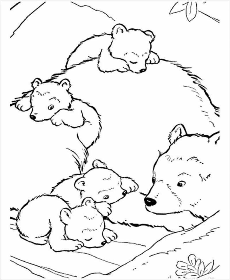 hình ảnh gấu mẹ và đàn con