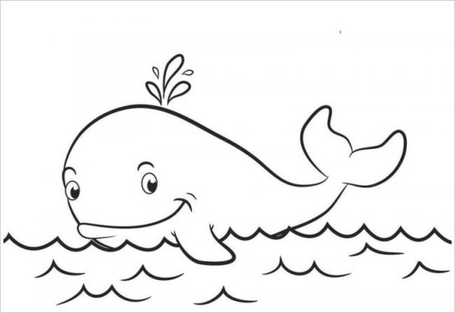 hình ảnh cá voi
