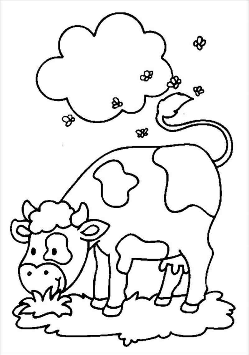hình ảnh con bò sữa đang gặm cỏ