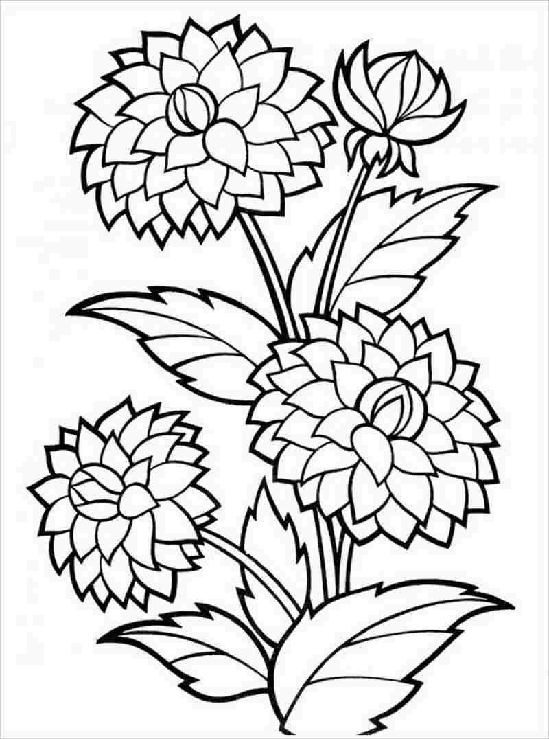 hình ảnh ba bông hoa