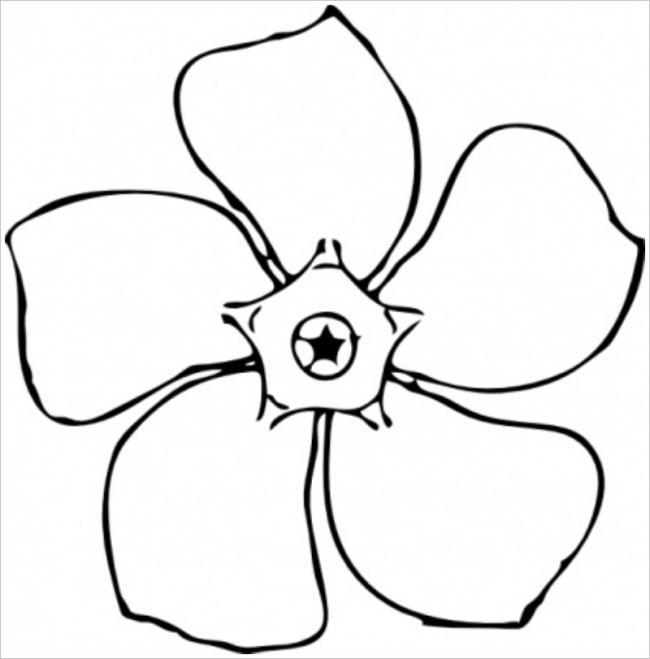 hình ảnh bông hoa 5 cánh