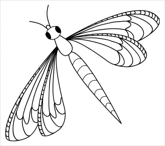 hình ảnh chuồn chuồn