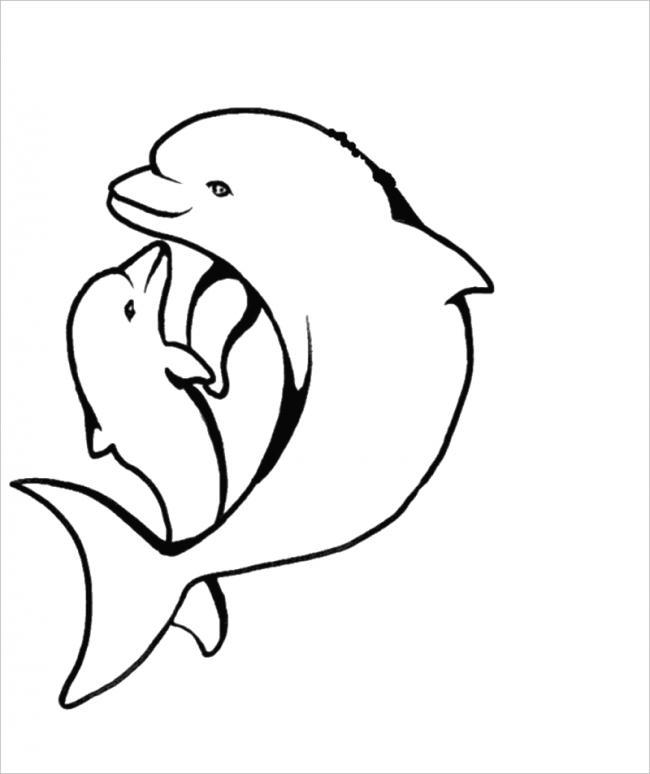 hình ảnh mẹ con cá heo