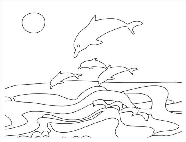 hình ảnh đàn cá heo