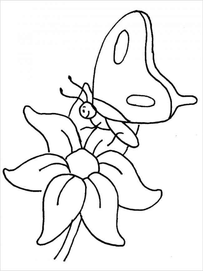 hình ảnh bướm đậu trên cánh hoa