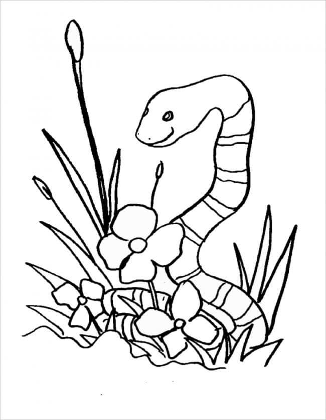 Hình ảnh chú rắn bò bên hoa