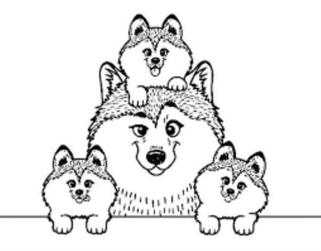 Gia đình những chú chó sói