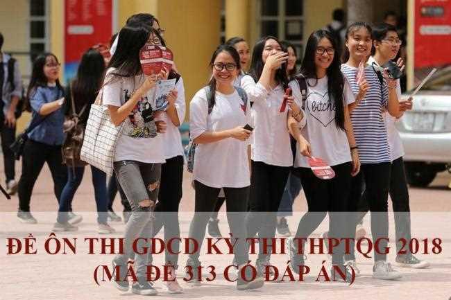 học sinh giải mã đề 313 thi thử môn công dân THPT quốc gia