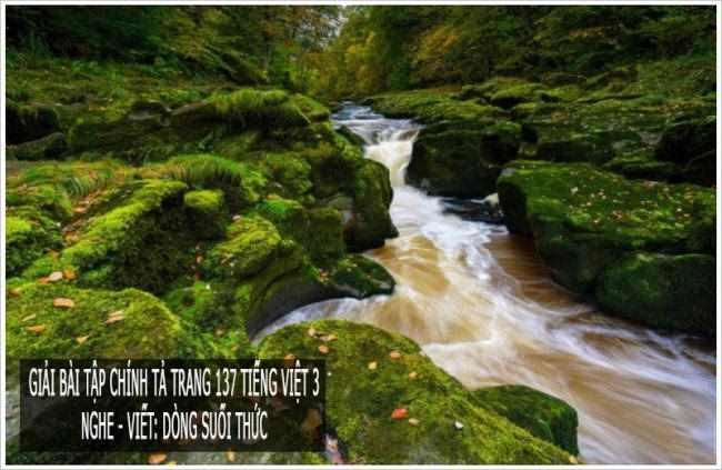 Giải bài tập chính tả trang 137 Tiếng Việt 3 Nghe - viết: Dòng suối thức