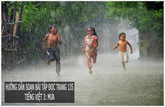 Hướng dẫn soạn bài tập đọc trang 135 Tiếng Việt 3: Mưa