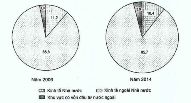 biểu đồ cơ cấu lao động phân theo thành phần kinh tế