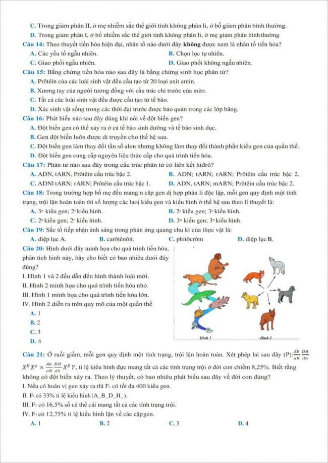 câu 14 đến 21 trang 2 đề thi sinh chuyên thái binh