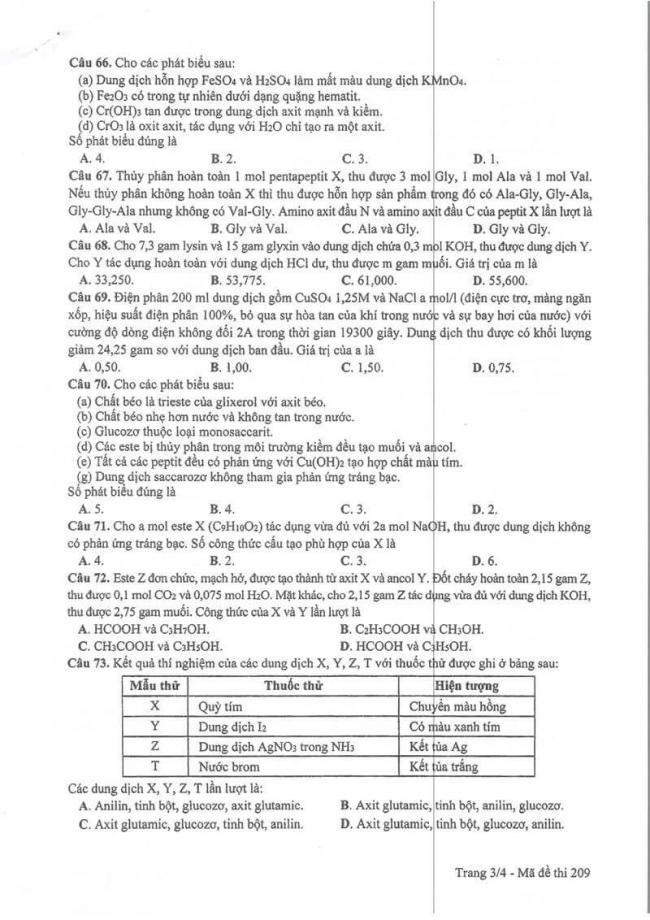 Đáp án đề thi môn Hoá THPT Quốc gia năm 2017 mã đề 209 trang 3