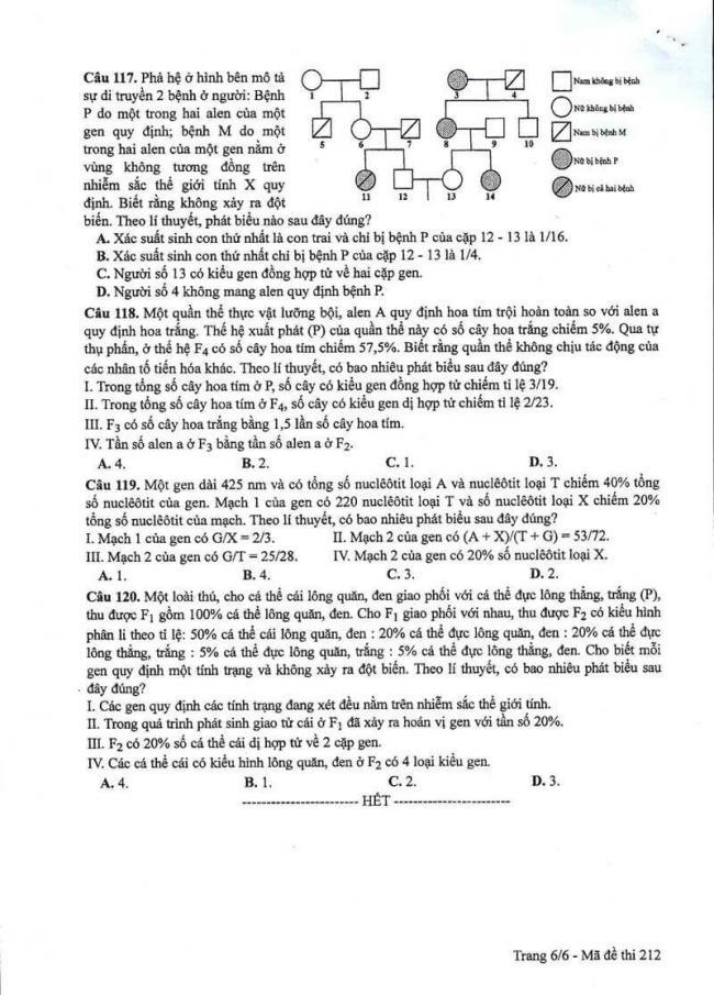 Đáp án đề thi môn Sinh 212 THPT Quốc Gia năm 2017 trang 6