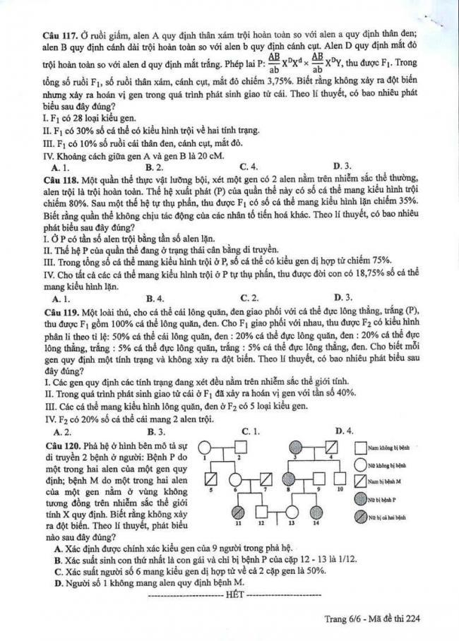 Đáp án đề thi môn Sinh 224 THPT Quốc Gia năm 2017 trang 6