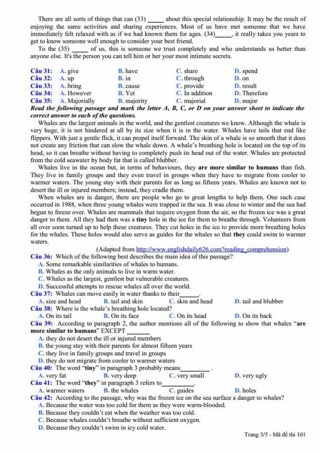 Đề thi thử môn Anh thptqg năm 2018 trường THPT Nguyễn Viết Xuân Vĩnh Phúc trang 3