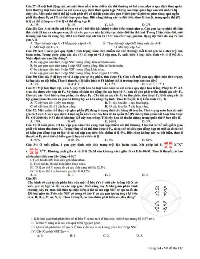 Đề thi thử môn Sinh thptqg năm 2018 trường Chuyên Lương Thế Vinh – Đồng Nai trang 3