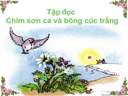 Soạn bài tập đọc Chim sơn ca và bông cúc trắng trang 23 SGK Tiếng Việt 2 tập 2