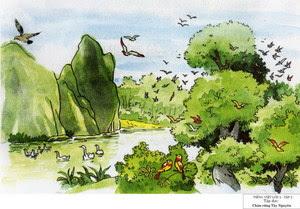 Soạn bài tập đọc Chim rừng Tây Nguyên trang 34 SGK Tiếng Việt 2 tập 2