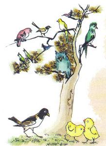 Soạn bài tập đọc Vè chim trang 28 SGK Tiếng Việt 2 tập 2