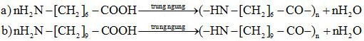 Đáp án bài 5 trang 48 sgk hóa lớp 12