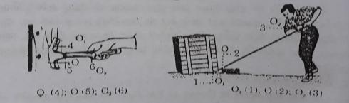 Đáp án bài C1 trang 47 sgk toán 6 tập 1