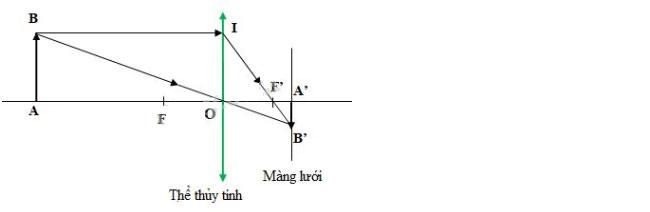 Đáp án bài 24 trang 152 sgk vật lý lớp 9