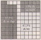 biểu đồ ô vuông