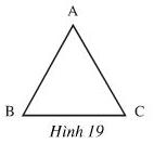 hình 19
