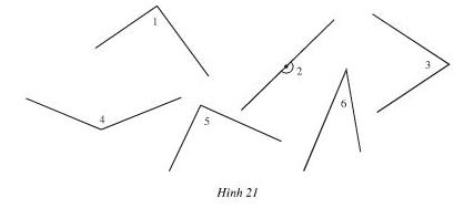 hình 21
