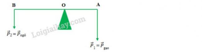 Giải bài tập Vật Lý lớp 10 bài 2 trang 106 sgk